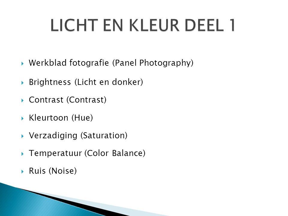  Werkblad fotografie (Panel Photography)  Brightness (Licht en donker)  Contrast (Contrast)  Kleurtoon (Hue)  Verzadiging (Saturation)  Temperat