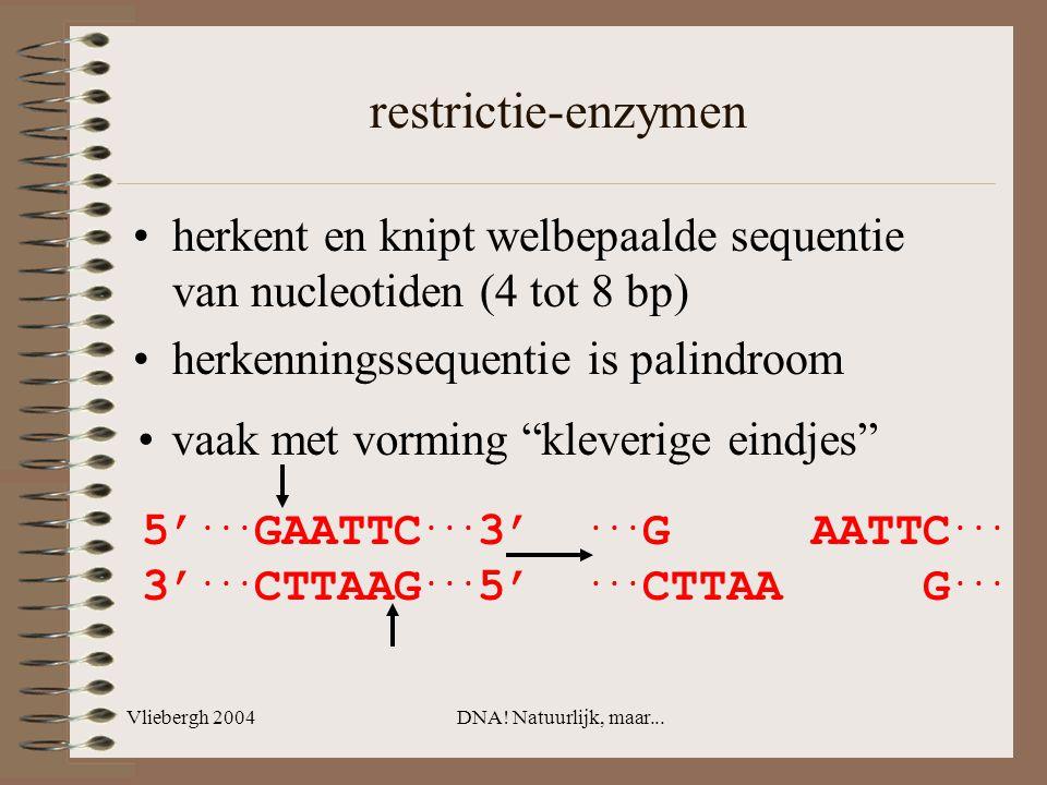 Vliebergh 2004DNA! Natuurlijk, maar... restrictie-enzymen... G AATTC...... CTTAA G... herkent en knipt welbepaalde sequentie van nucleotiden (4 tot 8