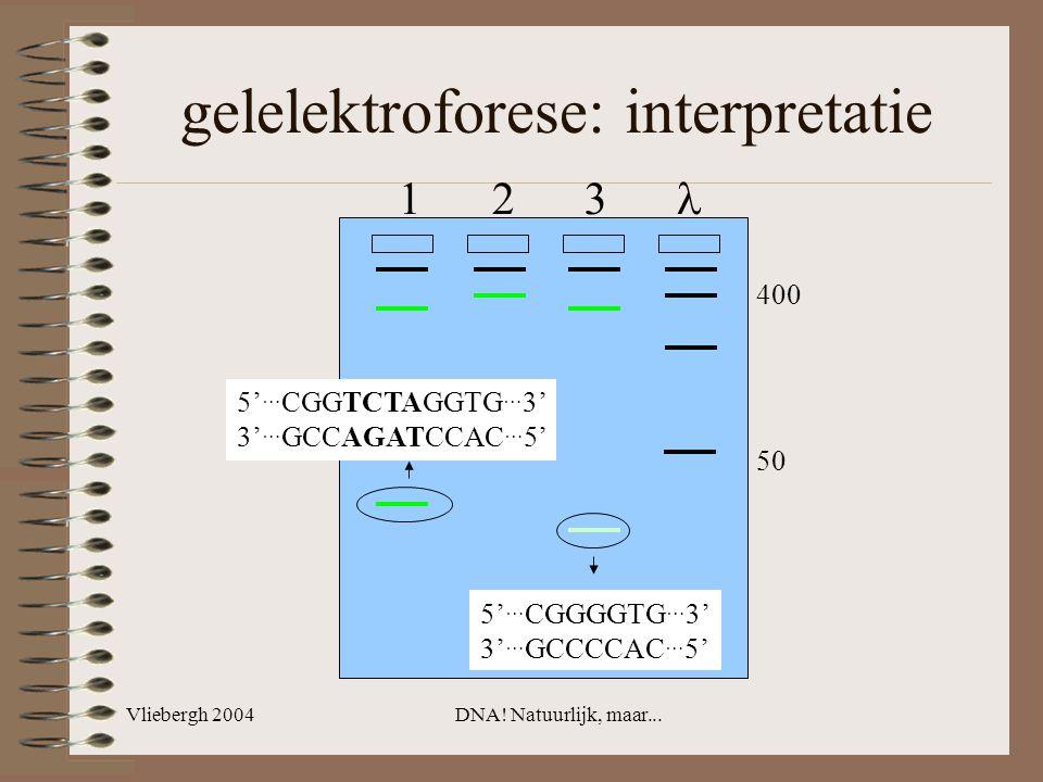 Vliebergh 2004DNA! Natuurlijk, maar... gelelektroforese: interpretatie 5' … CGGTCTAGGTG … 3' 3' … GCCAGATCCAC … 5' 5' … CGGGGTG … 3' 3' … GCCCCAC … 5'