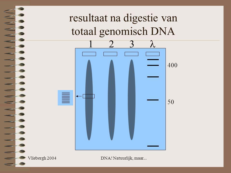 Vliebergh 2004DNA! Natuurlijk, maar... resultaat na digestie van totaal genomisch DNA 1 2 3 400 50