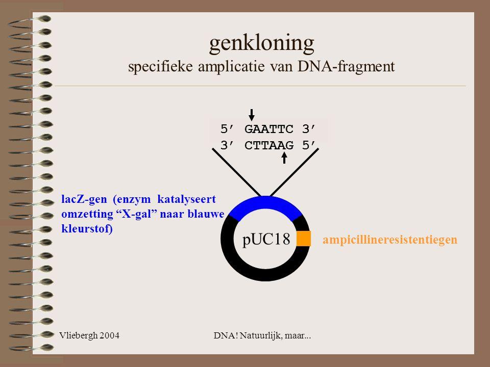Vliebergh 2004DNA! Natuurlijk, maar... 5' GAATTC 3' 3' CTTAAG 5' genkloning specifieke amplicatie van DNA-fragment lacZ-gen (enzym katalyseert omzetti