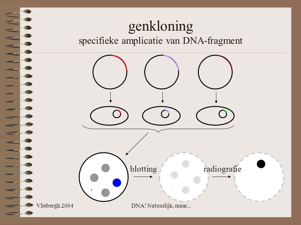 Vliebergh 2004DNA! Natuurlijk, maar... genkloning specifieke amplicatie van DNA-fragment blotting radiografie