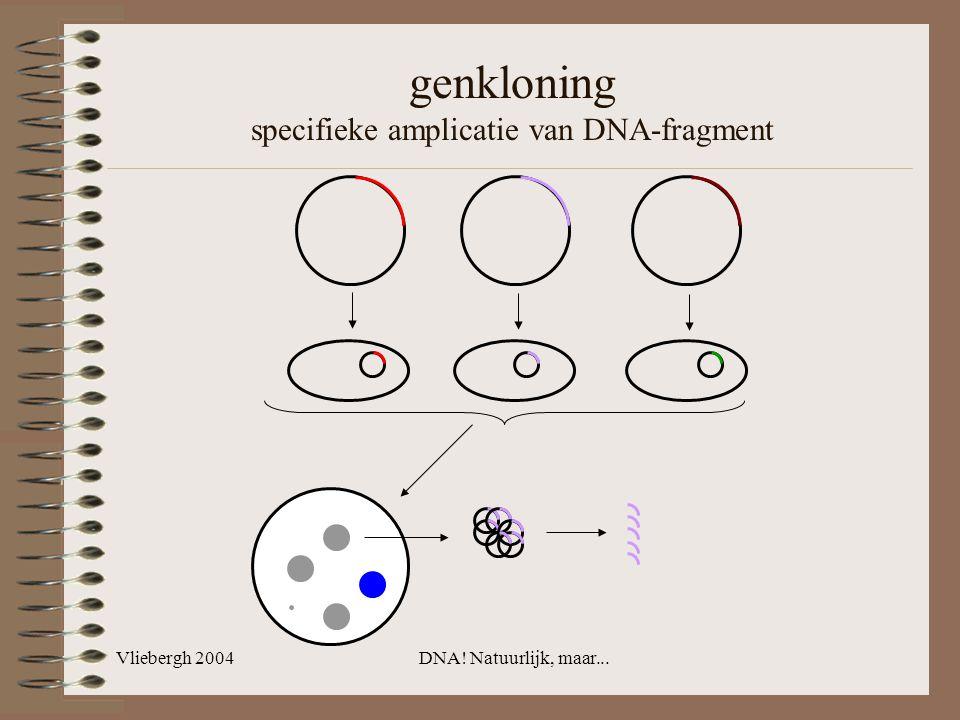 Vliebergh 2004DNA! Natuurlijk, maar... genkloning specifieke amplicatie van DNA-fragment