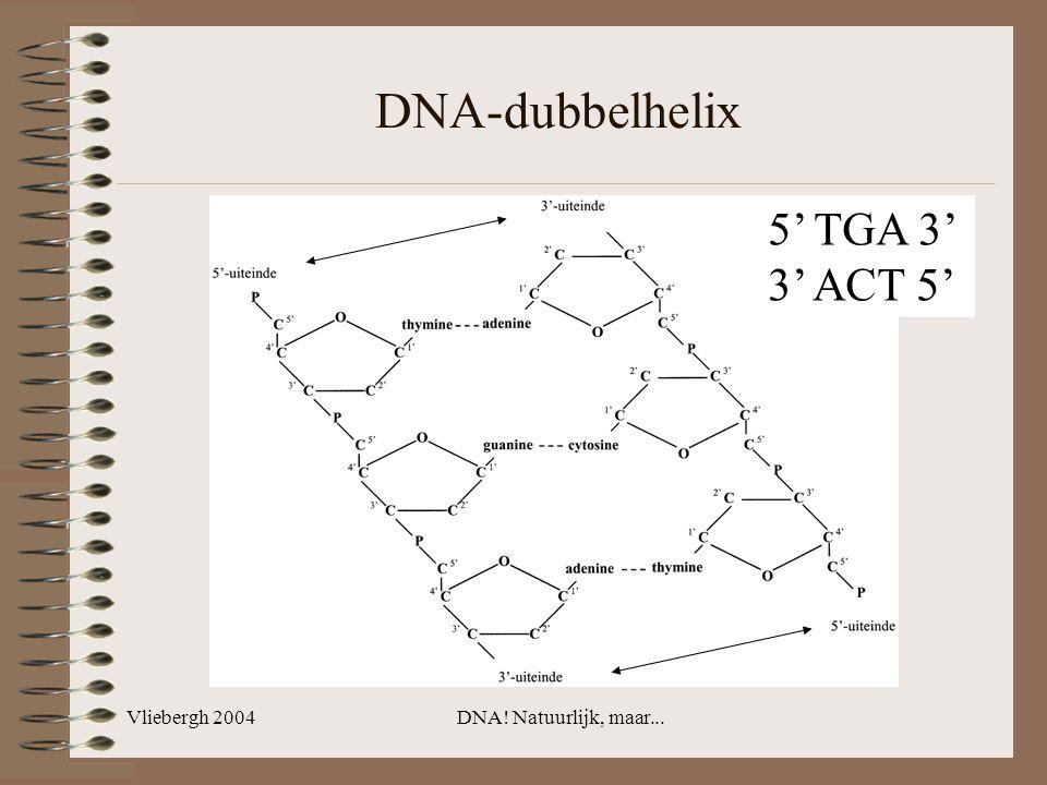Vliebergh 2004DNA! Natuurlijk, maar... DNA-dubbelhelix 5' TGA 3' 3' ACT 5'