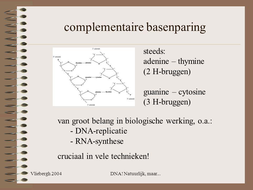 Vliebergh 2004DNA! Natuurlijk, maar... complementaire basenparing steeds: adenine – thymine (2 H-bruggen) guanine – cytosine (3 H-bruggen) van groot b