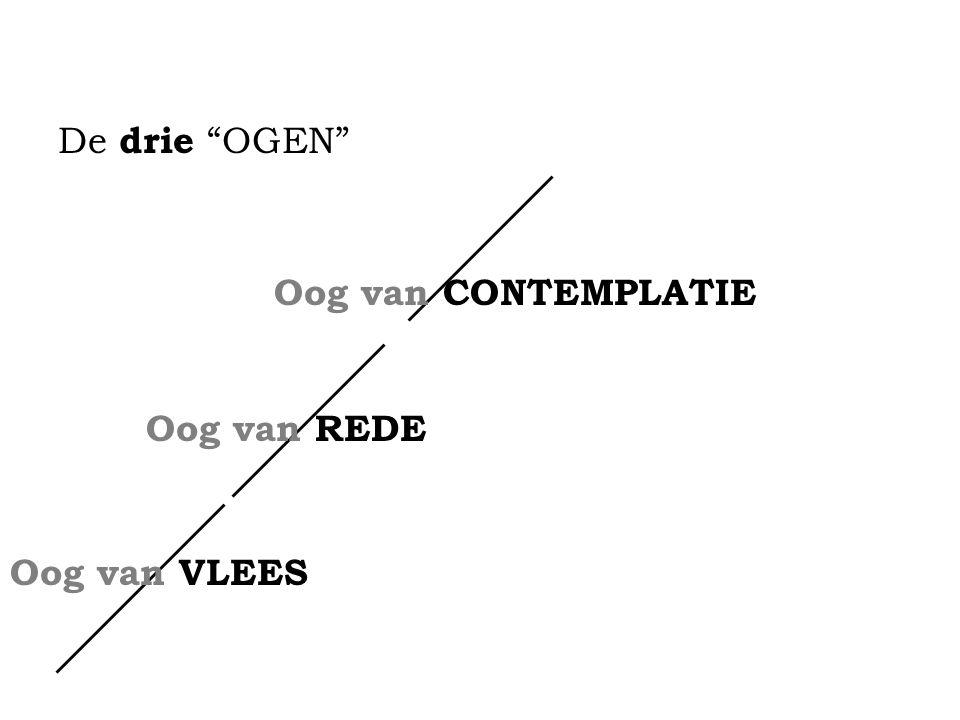 De drie LOGICA'S VLEES : MONO logisch REDE : DIA logisch CONTEMPLATIE : TRANS logisch