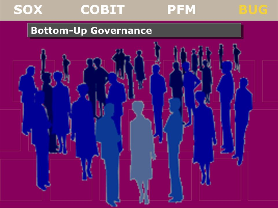 SOX COBIT PFM BUG Bottom-Up Governance