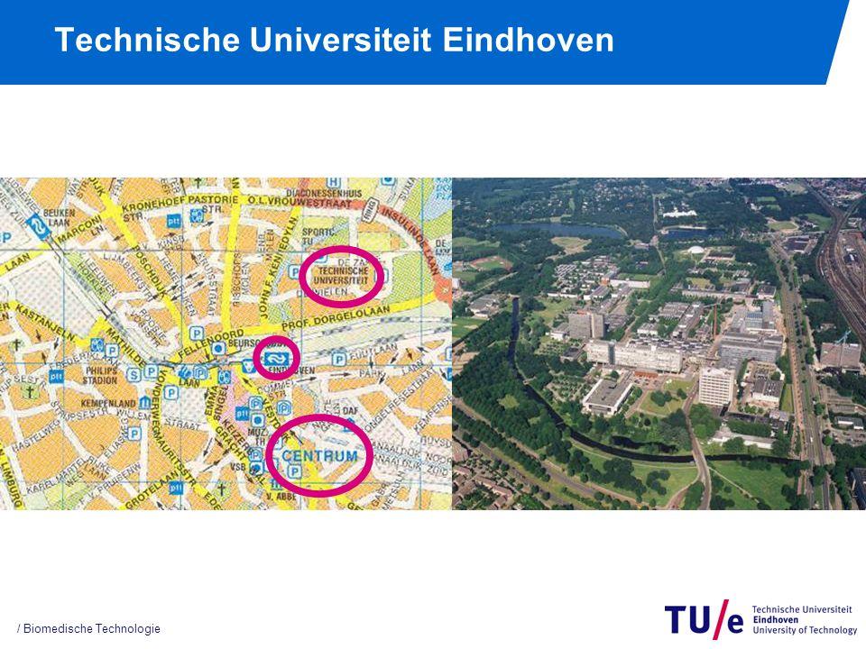 / Biomedische Technologie Technische Universiteit Eindhoven