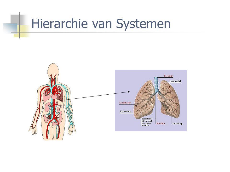 Hierarchie van Systemen