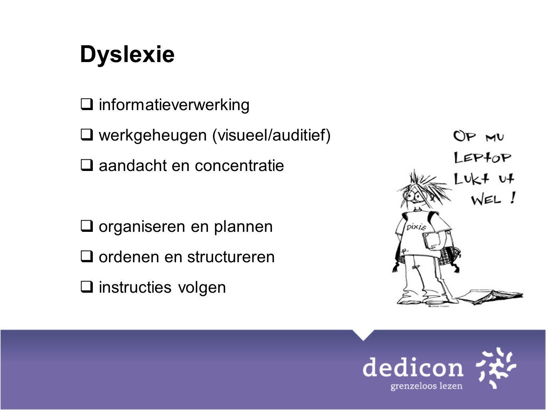 Dyslexie  informatieverwerking  werkgeheugen (visueel/auditief)  aandacht en concentratie  organiseren en plannen  ordenen en structureren  inst