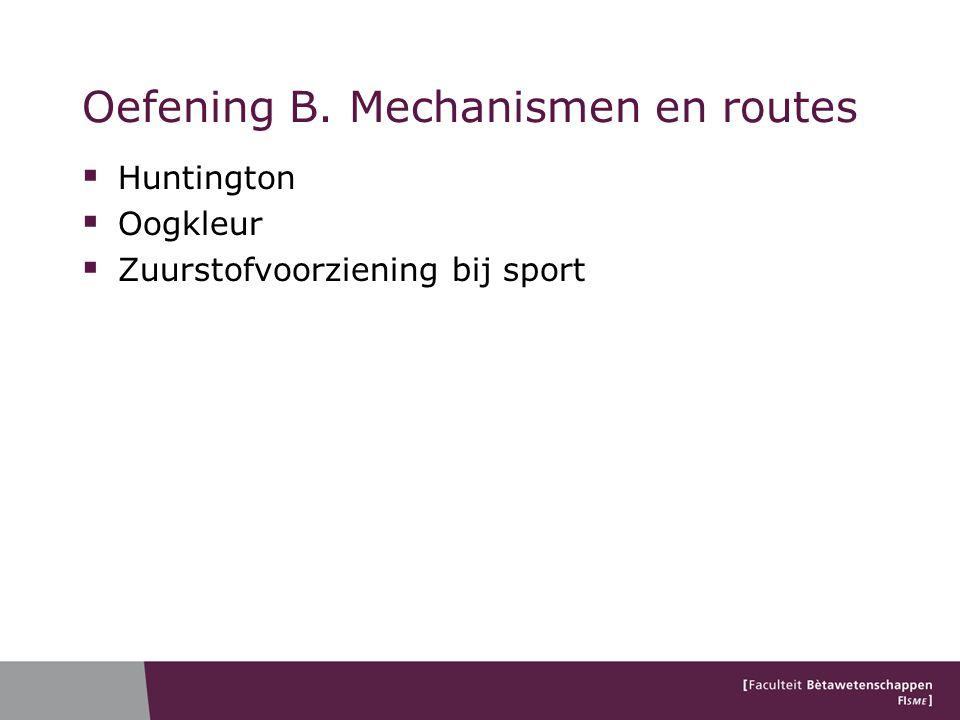 Oefening B. Mechanismen en routes  Huntington  Oogkleur  Zuurstofvoorziening bij sport