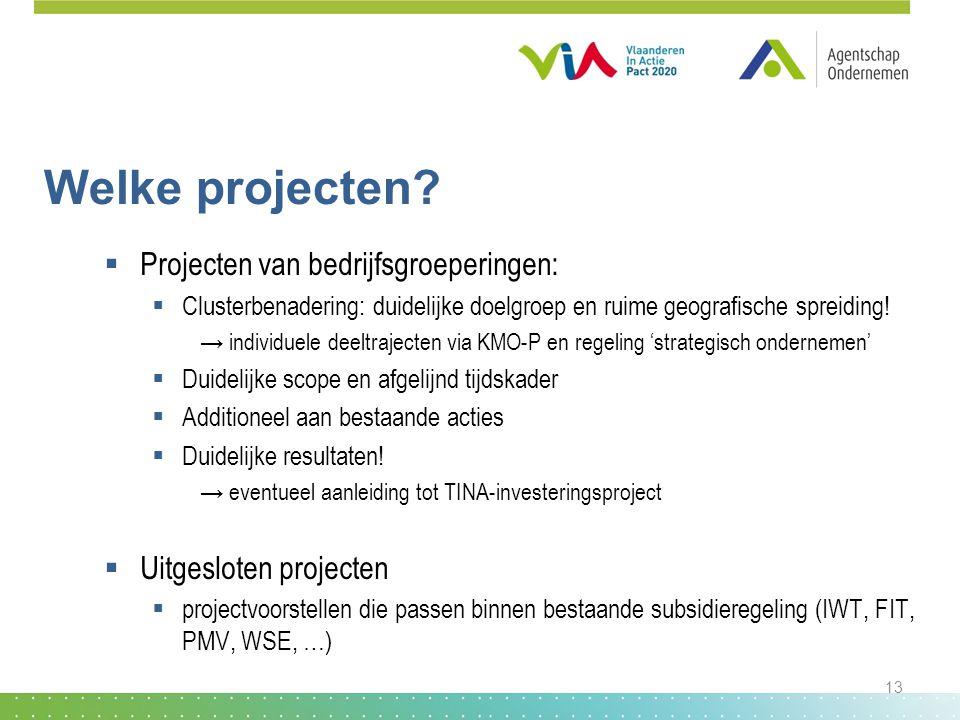 Welke projecten?  Projecten van bedrijfsgroeperingen:  Clusterbenadering: duidelijke doelgroep en ruime geografische spreiding! → individuele deeltr