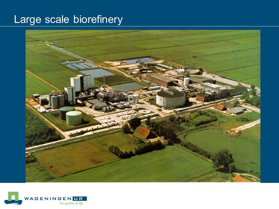 Large scale biorefinery