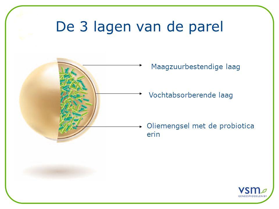 De 3 lagen van de parel Oliemengsel met de probiotica erin Vochtabsorberende laag Maagzuurbestendige laag