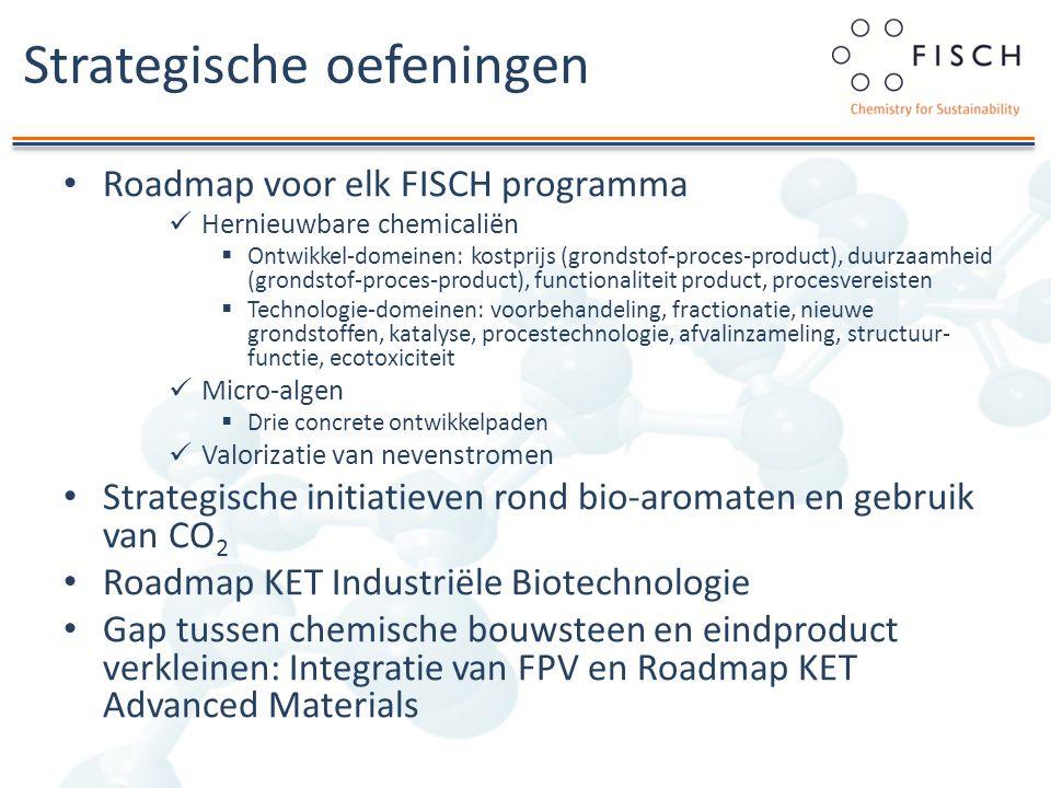 Strategische oefeningen Roadmap voor elk FISCH programma Hernieuwbare chemicaliën  Ontwikkel-domeinen: kostprijs (grondstof-proces-product), duurzaam