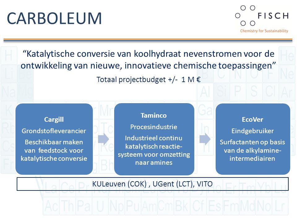 """CARBOLEUM """"Katalytische conversie van koolhydraat nevenstromen voor de ontwikkeling van nieuwe, innovatieve chemische toepassingen"""" Totaal projectbudg"""