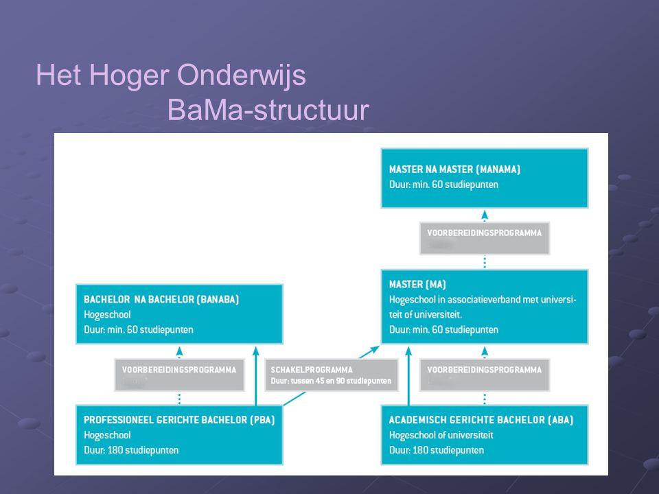 Het Hoger Onderwijs BaMa-structuur