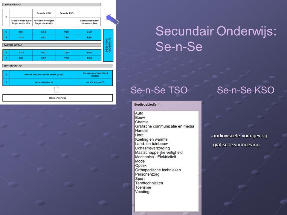 Secundair Onderwijs: Se-n-Se Se-n-Se TSO Se-n-Se KSO -audiovisuele vormgeving -audiovisuele vormgeving -grafische vormgeving -grafische vormgeving
