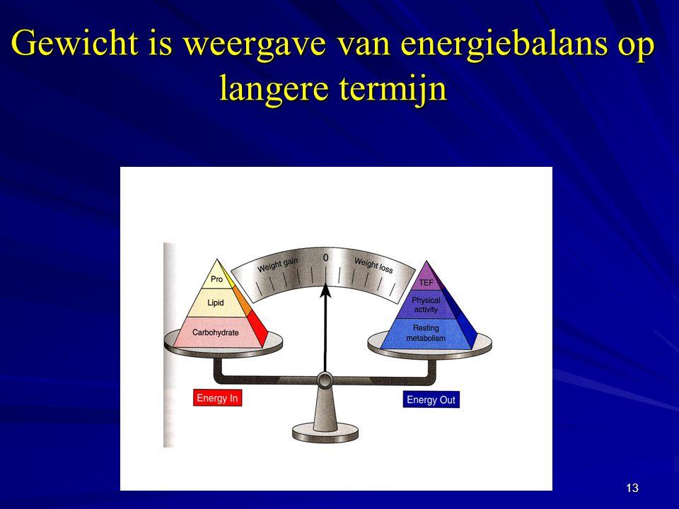 13 Gewicht is weergave van energiebalans op langere termijn