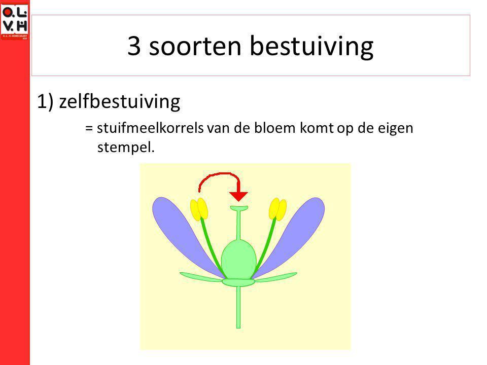 3 soorten bestuiving 1) zelfbestuiving = stuifmeelkorrels van de bloem komt op de eigen stempel.