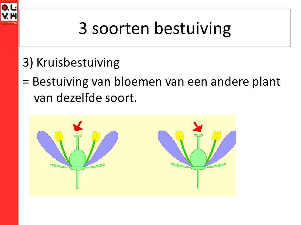 3 soorten bestuiving 3) Kruisbestuiving = Bestuiving van bloemen van een andere plant van dezelfde soort.