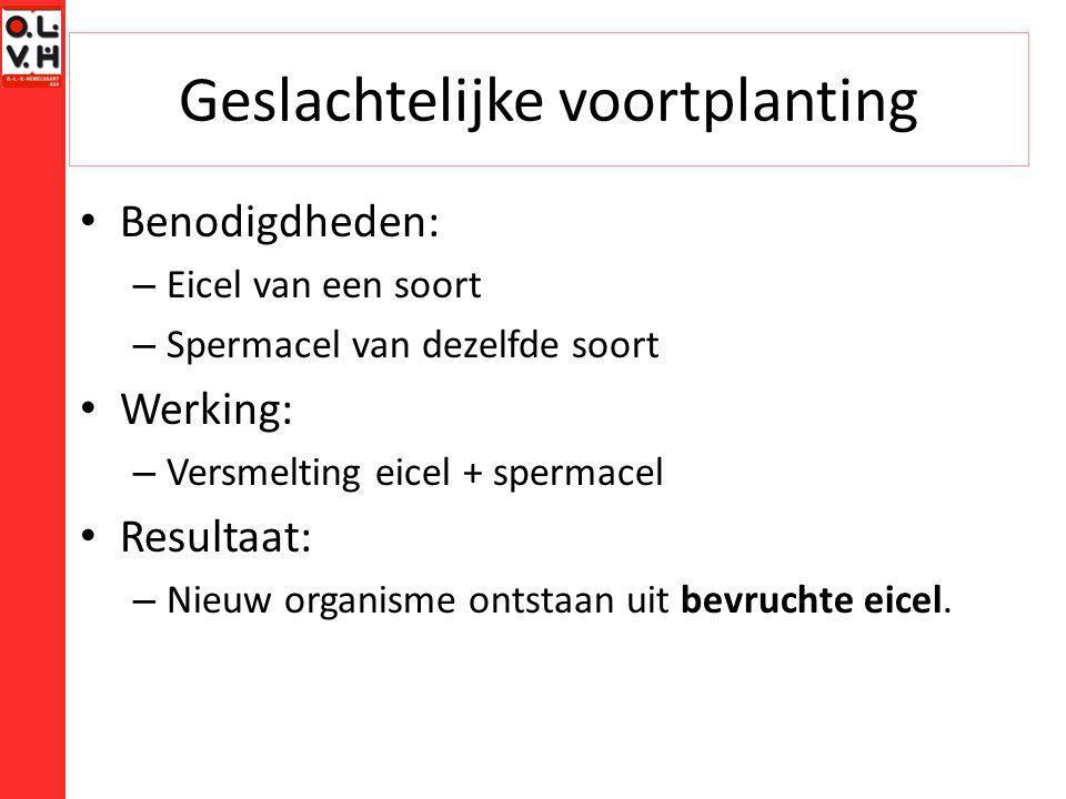 Geslachtelijke voortplanting Benodigdheden: – Eicel van een soort – Spermacel van dezelfde soort Werking: – Versmelting eicel + spermacel Resultaat: –