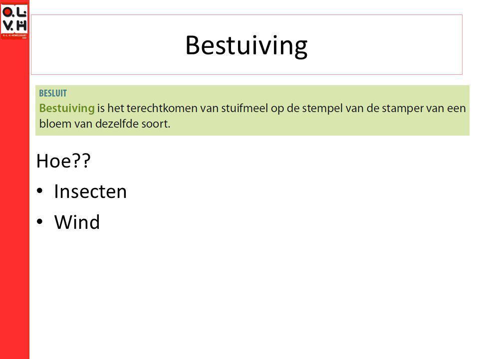 Bestuiving Hoe?? Insecten Wind