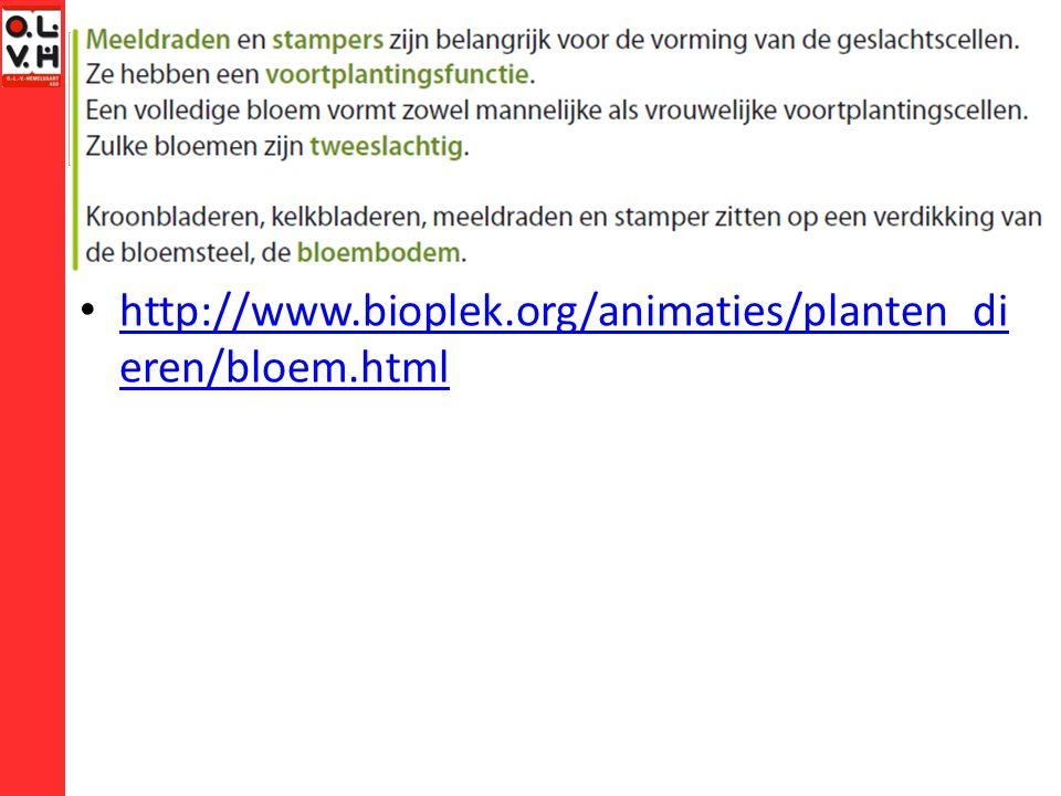 http://www.bioplek.org/animaties/planten_di eren/bloem.html http://www.bioplek.org/animaties/planten_di eren/bloem.html