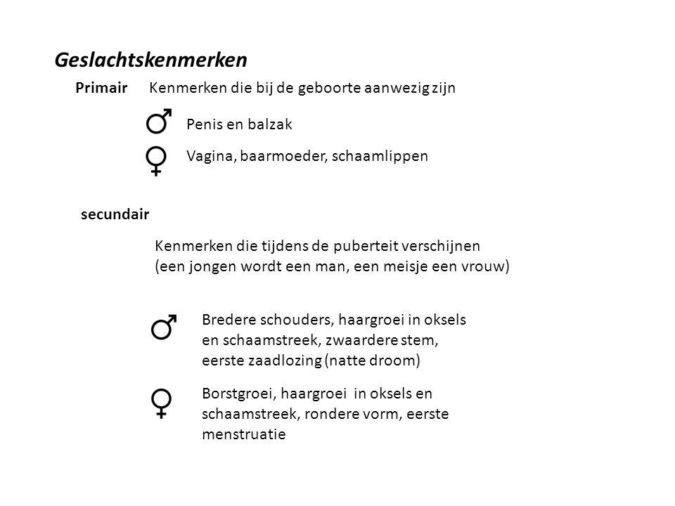 Geslachtskenmerken Primair secundair Kenmerken die bij de geboorte aanwezig zijn Penis en balzak Vagina, baarmoeder, schaamlippen Kenmerken die tijdens de puberteit verschijnen (een jongen wordt een man, een meisje een vrouw) Bredere schouders, haargroei in oksels en schaamstreek, zwaardere stem, eerste zaadlozing (natte droom) Borstgroei, haargroei in oksels en schaamstreek, rondere vorm, eerste menstruatie