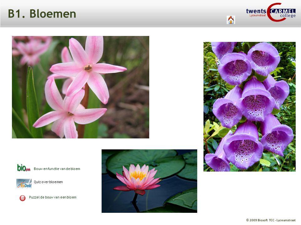 © 2009 Biosoft TCC - Lyceumstraat B1. Bloemen Bouw en functie van de bloem Quiz over bloemen Puzzel de bouw van een bloem