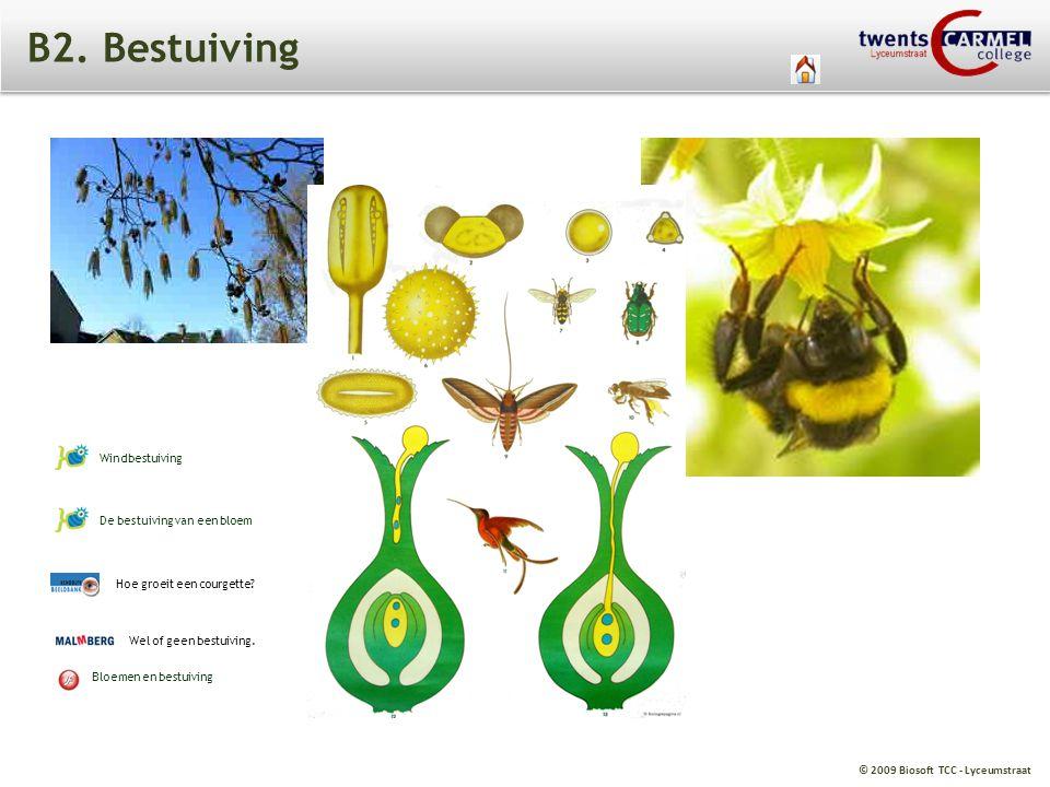 © 2009 Biosoft TCC - Lyceumstraat B2. Bestuiving Wel of geen bestuiving. Bloemen en bestuiving Hoe groeit een courgette? De bestuiving van een bloem W