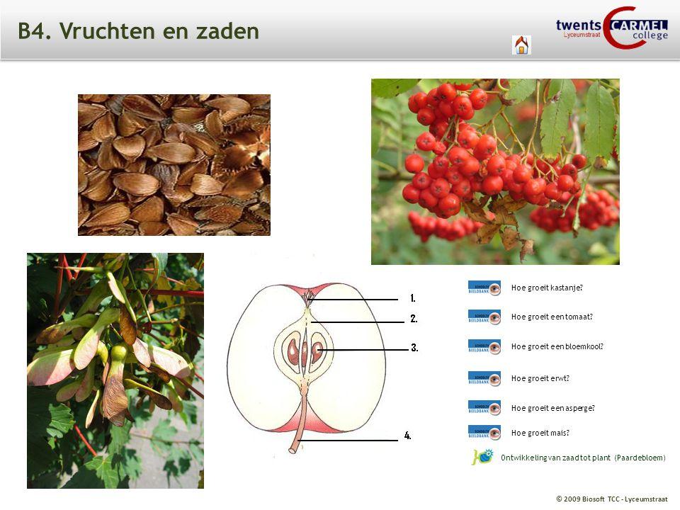 © 2009 Biosoft TCC - Lyceumstraat B4. Vruchten en zaden Ontwikkeling van zaad tot plant (Paardebloem) Hoe groeit een bloemkool? Hoe groeit erwt? Hoe g