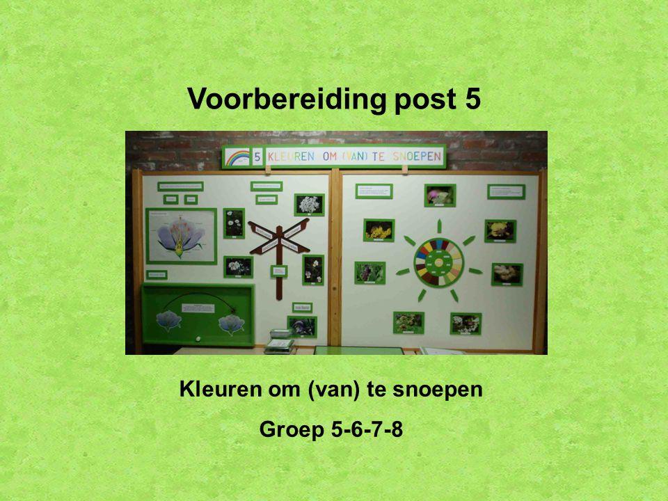 Voorbereiding post 5 Kleuren om (van) te snoepen Groep 5-6-7-8