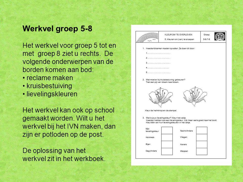Werkvel groep 5-8 Het werkvel voor groep 5 tot en met groep 8 ziet u rechts. De volgende onderwerpen van de borden komen aan bod: reclame maken kruisb