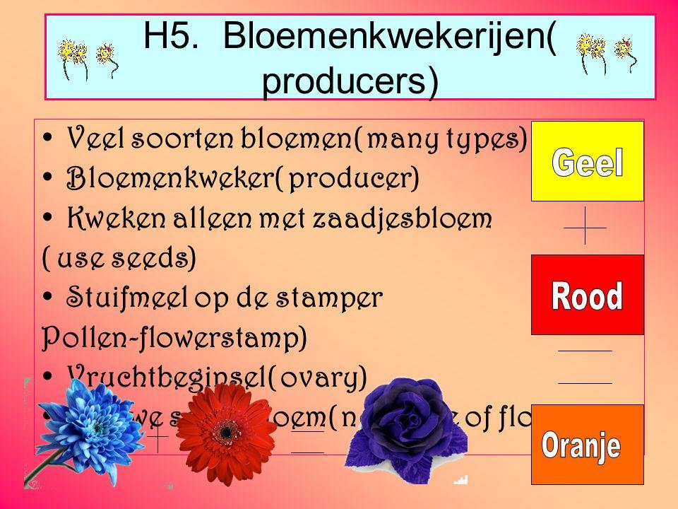 H5. Bloemenkwekerijen( producers) Veel soorten bloemen( many types) Bloemenkweker( producer) Kweken alleen met zaadjesbloem ( use seeds) Stuifmeel op