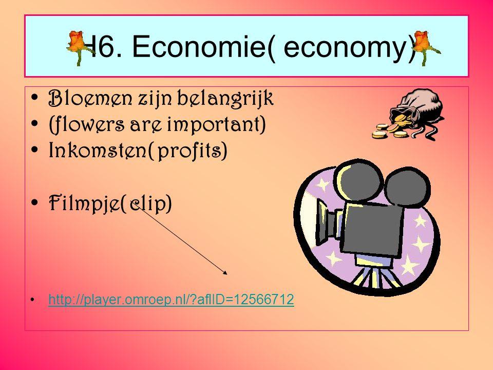 H6. Economie( economy) Bloemen zijn belangrijk (flowers are important) Inkomsten( profits) Filmpje( clip) http://player.omroep.nl/?aflID=12566712
