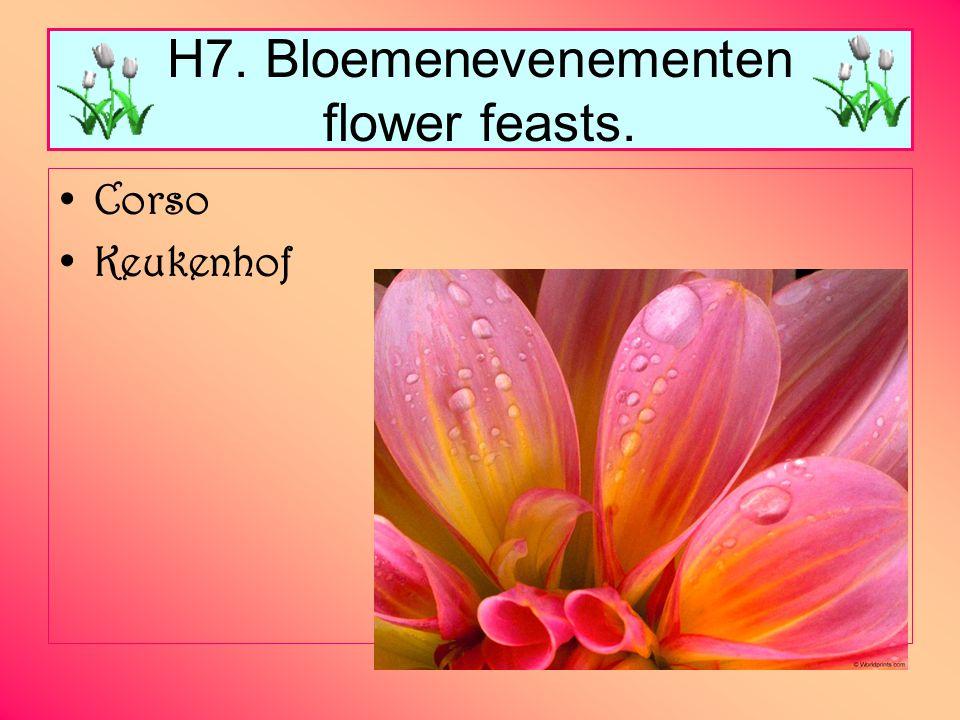 H7. Bloemenevenementen flower feasts. Corso Keukenhof