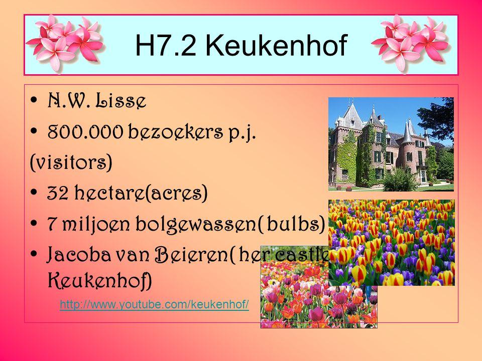 N.W. Lisse 800.000 bezoekers p.j. (visitors) 32 hectare(acres) 7 miljoen bolgewassen( bulbs) Jacoba van Beieren( her castle is in the Keukenhof) H7.2