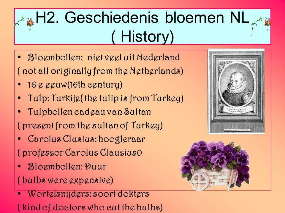 H2. Geschiedenis bloemen NL ( History) Bloembollen; niet veel uit Nederland ( not all originally from the Netherlands) 16 e eeuw(16th century) Tulp: T