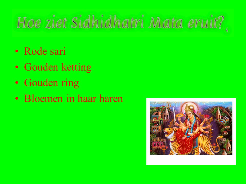 Rode sari Gouden ketting Gouden ring Bloemen in haar haren