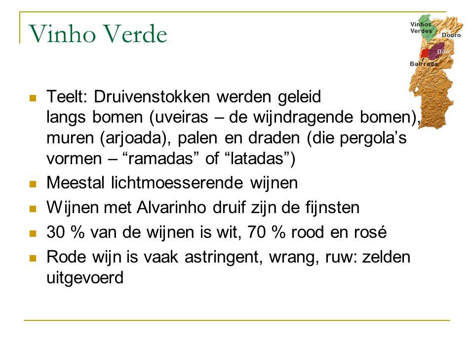 Vinho Verde Teelt: Druivenstokken werden geleid langs bomen (uveiras – de wijndragende bomen), muren (arjoada), palen en draden (die pergola's vormen – ramadas of latadas ) Meestal lichtmoesserende wijnen Wijnen met Alvarinho druif zijn de fijnsten 30 % van de wijnen is wit, 70 % rood en rosé Rode wijn is vaak astringent, wrang, ruw: zelden uitgevoerd