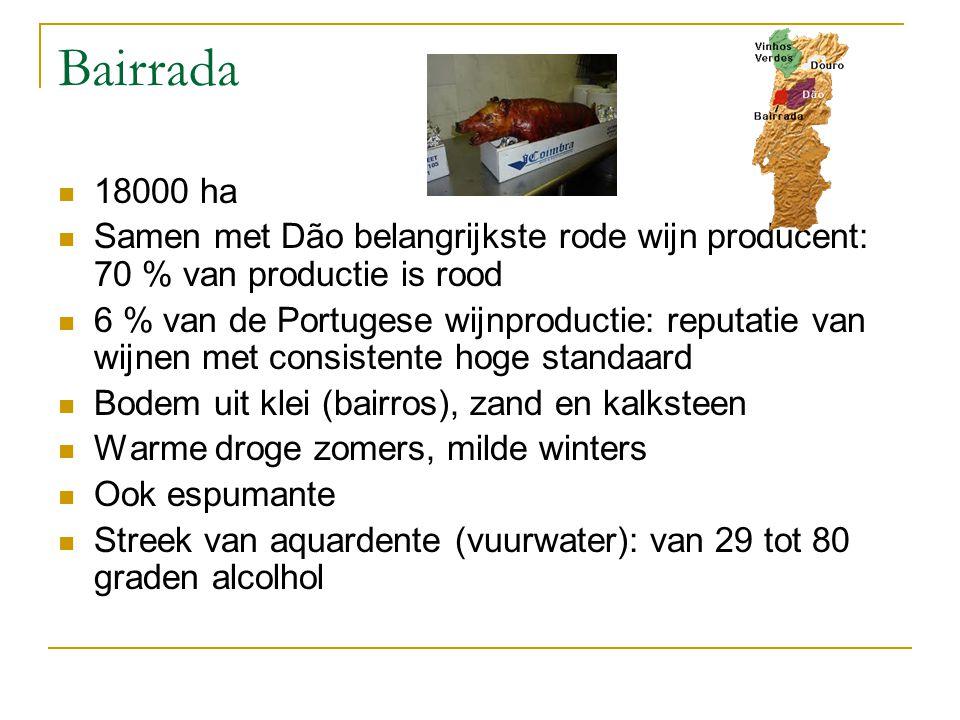 Bairrada 18000 ha Samen met Dão belangrijkste rode wijn producent: 70 % van productie is rood 6 % van de Portugese wijnproductie: reputatie van wijnen met consistente hoge standaard Bodem uit klei (bairros), zand en kalksteen Warme droge zomers, milde winters Ook espumante Streek van aquardente (vuurwater): van 29 tot 80 graden alcolhol