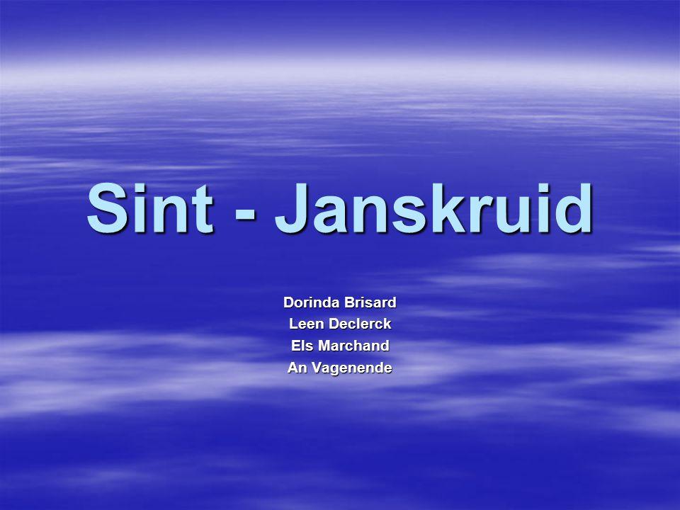 Sint - Janskruid Dorinda Brisard Leen Declerck Els Marchand An Vagenende