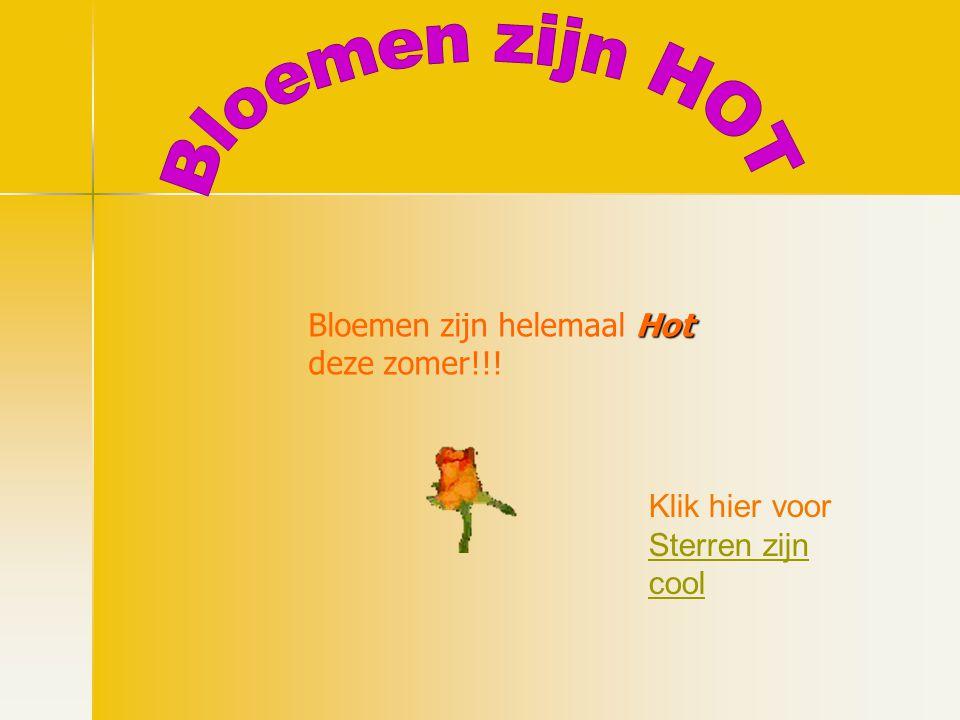 Hot Bloemen zijn helemaal Hot deze zomer!!! Klik hier voor Sterren zijn cool Sterren zijn cool