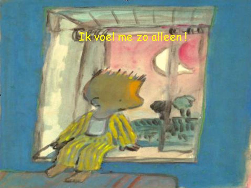 Ik voel me zo alleen !
