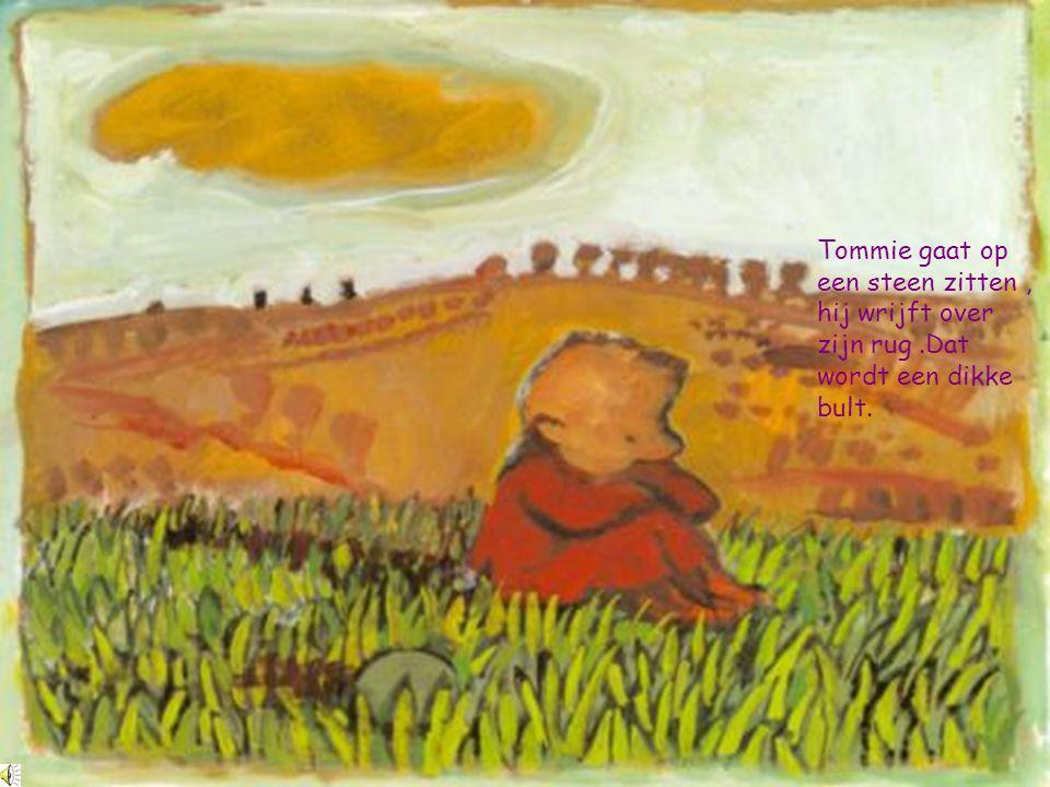 Tommie gaat op een steen zitten, hij wrijft over zijn rug.Dat wordt een dikke bult.