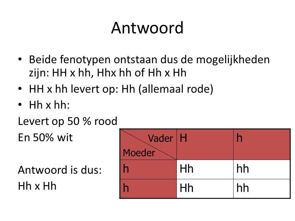 Antwoord Beide fenotypen ontstaan dus de mogelijkheden zijn: HH x hh, Hhx hh of Hh x Hh HH x hh levert op: Hh (allemaal rode) Hh x hh: Levert op 50 %