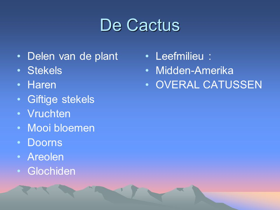 De Cactus Delen van de plant Stekels Haren Giftige stekels Vruchten Mooi bloemen Doorns Areolen Glochiden Leefmilieu : Midden-Amerika OVERAL CATUSSEN