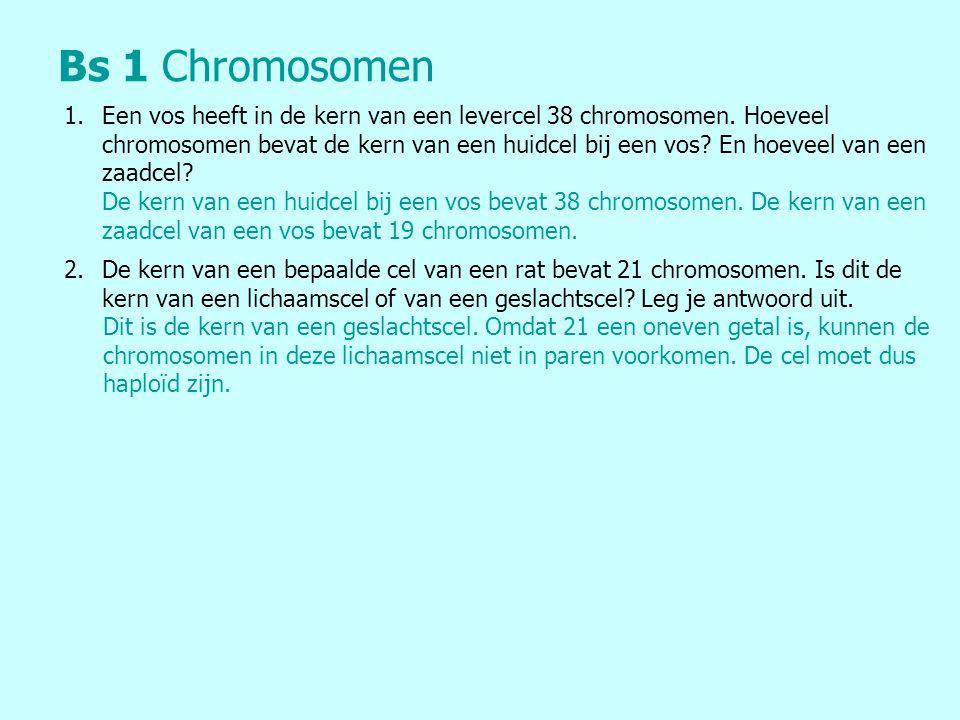 Bs 1Chromosomen 1.Een vos heeft in de kern van een levercel 38 chromosomen.