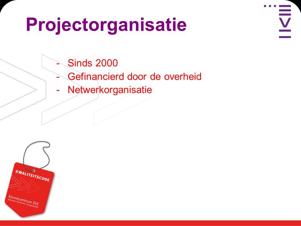 Projectorganisatie -Sinds 2000 -Gefinancierd door de overheid -Netwerkorganisatie